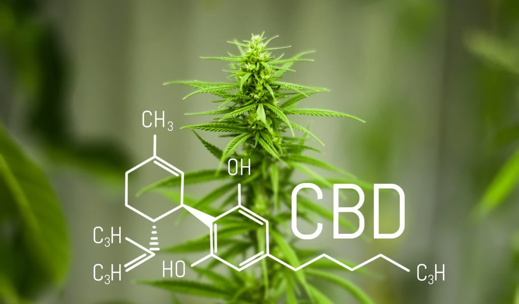Find Out If CBD Topicals Are The Skin Care Solution You Have Been Looking For?